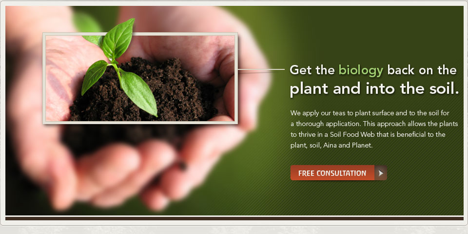 Get the Biology Back On the Plant and Into the Soil - banner - Get a Free Consultation